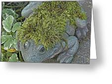 Whimsical Frog Greeting Card