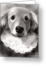 Whimsical Labrador Retriever In A Costume Greeting Card