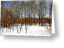 Whimsical Winter Greeting Card
