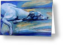 Whippet-effects Of Gravity-6 Greeting Card