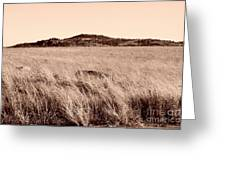 Whispering Fields Greeting Card