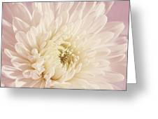 Whispering White Floral Greeting Card