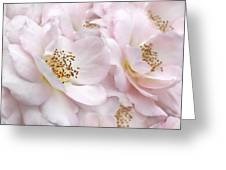 Whispers Of Pink Roses Greeting Card