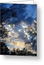 Whispers Of Winter Present Greeting Card