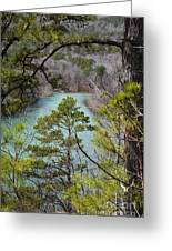 Whistling Pines Greeting Card