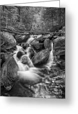 White And Rocky Bw Greeting Card