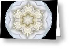 White Begonia II Flower Mandala Greeting Card by David J Bookbinder