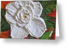 White Begonia Greeting Card