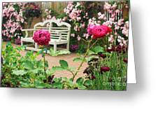 White Bench And Pink Climbing Roses In English Garden Greeting Card