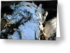 White Birch Log Greeting Card