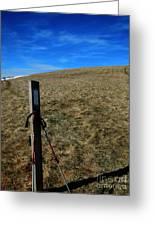 Appalachian Trail White Blaze Post Greeting Card