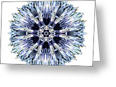Blue Globe Thistle I Flower Mandala White Greeting Card
