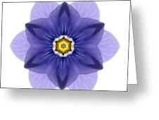 Blue Pansy I Flower Mandala White Greeting Card