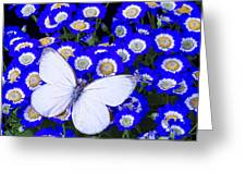 White Butterfly In Blue Flowers Greeting Card