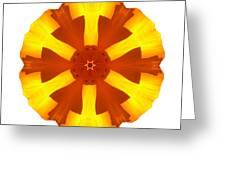 California Poppy I Flower Mandala White Greeting Card