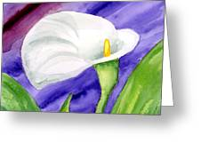 White Calla Lily Purple Mood Greeting Card