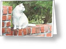 White Cat On Brick Wall Watercolor Portrait Greeting Card