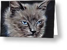 White Cat Portrait Greeting Card