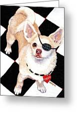 White Chihuahua - Pistachio Greeting Card