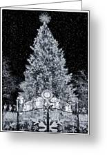 White Christmas In Texas Greeting Card