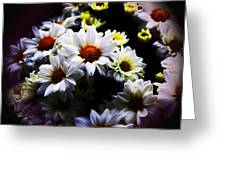 White Chrysanthemum Greeting Card