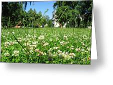 White Clover Field And The Playground Greeting Card
