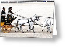 White Coach Horses Greeting Card