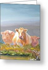White Cows Painting Greeting Card