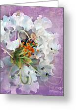 White Crape Myrtle Greeting Card