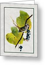 White Crowned Finch Vertical Greeting Card