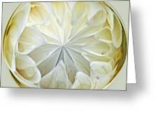 White Dahlia Orb Greeting Card
