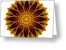 Deep Orange Marigold V Flower Mandala White Greeting Card
