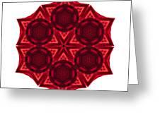 Dying Amaryllis IIi Flower Mandala White Greeting Card