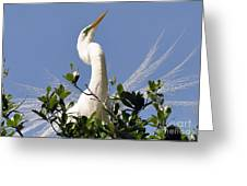 White Egret In Spring Greeting Card