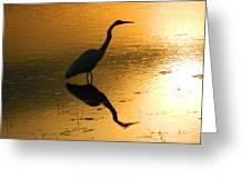White Egret Reflection Greeting Card
