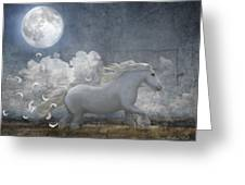White Feathered Moon Greeting Card