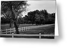 White Fence On The Wooded Green Greeting Card