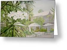 White Flowers Aruba Greeting Card