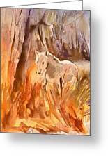 White Horse In The Camargue 01 Greeting Card