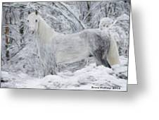White Horse In The Snow Greeting Card