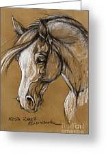 White Horse Soft Pastel Sketch Greeting Card
