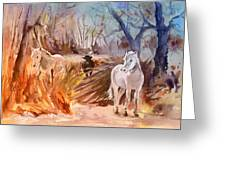 White Horses And Bull In The Camargue Greeting Card