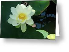White Lotus I Greeting Card