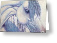 White Mare Greeting Card