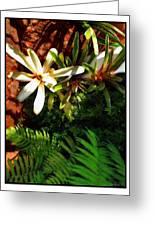White Maui Flowers Greeting Card