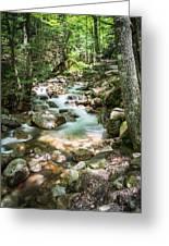 White Mountains Stream Greeting Card