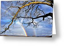 White Oak And Double Rainbow Greeting Card by Thomas R Fletcher