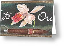 White Orchid Cigar Label Greeting Card