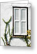 White Painted Shutter Greeting Card
