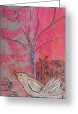White Peace Bird On Pink Greeting Card